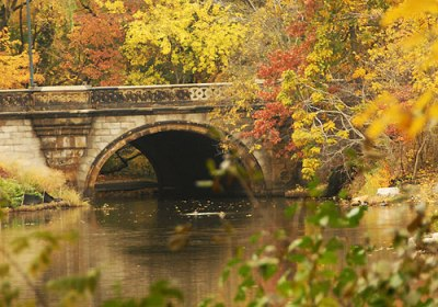 Balcony Bridge Central Park