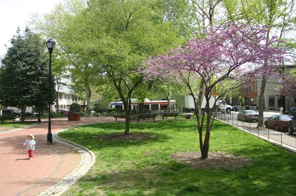 Urban trees Philadelphia