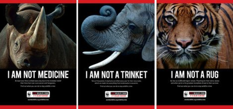 WWF Anti Poaching Campaign