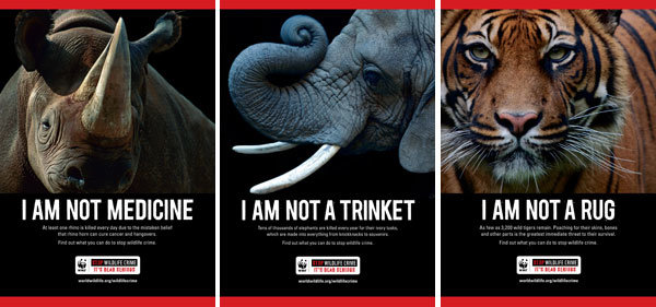 WWF Anti Poaching Campaign