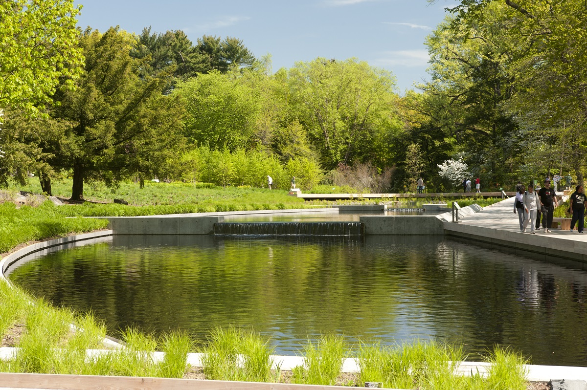 Splendid water feature in the Native Flower Garden at New York Botanical Garden