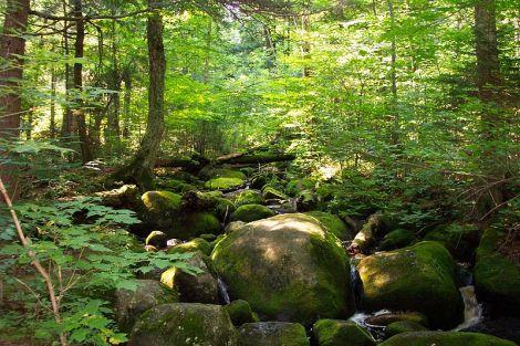 Adirondacks Courtesy of Wiki Commons