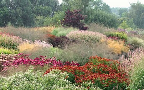 Earlier work by Piet Oudolf, Pensthorpe in Norfolk