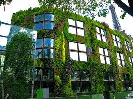 Quai Branley Museum facade was designed by Patrick Blanc