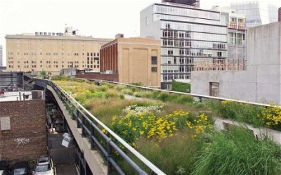 The High Line in New York, Piet Oudolf