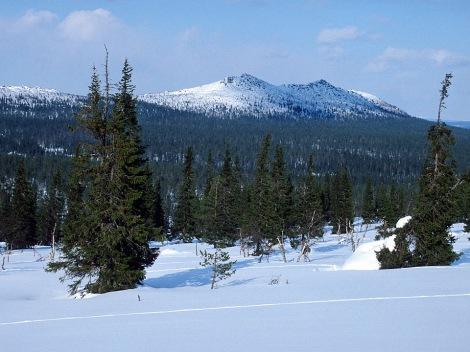 The Urho Kekkonen National Park which lies in the Green Belt of Fennoscandia