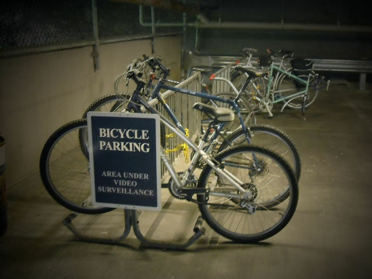 Bicycle racks at the Carnegie Museum of Natural History