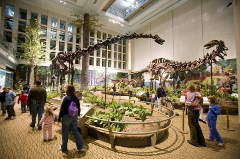 The LEED Silver expansion at the Carnegie Museum of Natural History was accomplished by closing in a courtyard. It tripled the display space for the new hall Dinosaurs in Their Time.