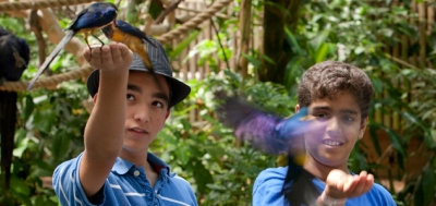 Up close and personal experiences for a school group at the Aviary can include hand feeding and other contact.