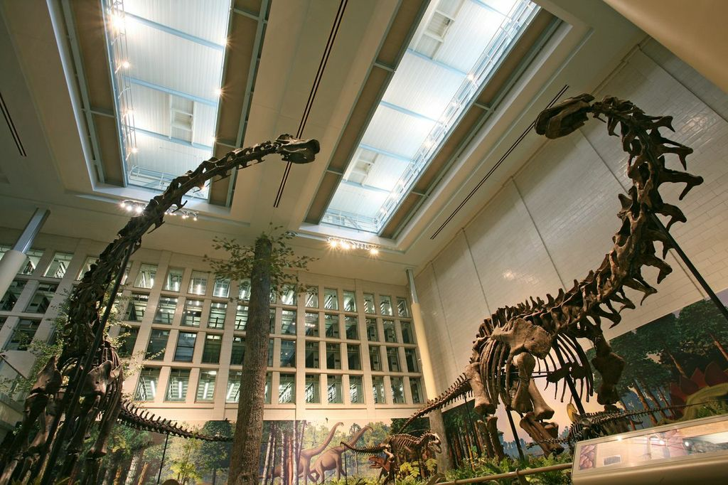 Dinosaurs in their Time at the Carnegie Natural History Museum.