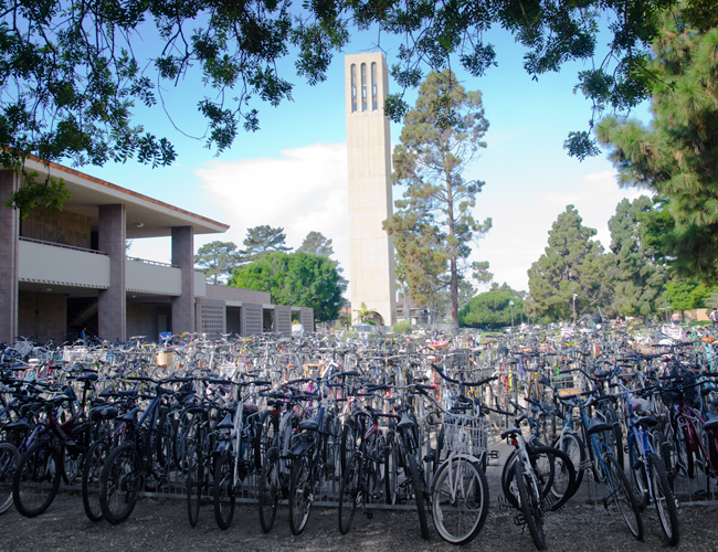 """No, it's not Amsterdam. The UC Santa Barbara bicycle """"parking lot."""" UCSB ranks #1 in 2013 Cool Schools Survey. Photo courtesy of Jonas Krant."""