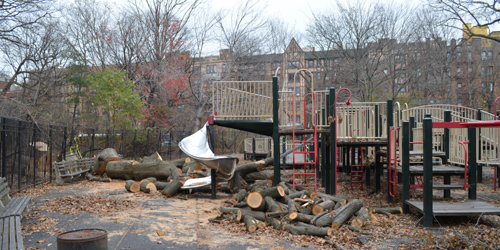 Downed trees near the Lincoln Playground in Brooklyn's Prospect Park.
