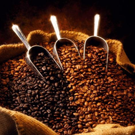 Coffee - a world commodity and beverage