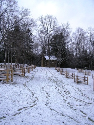 Log cabin from the 1700's with the recently planted heirloom apple orchard