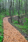 Walking trail in the woodlands gardens