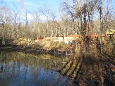 Woodlands pond