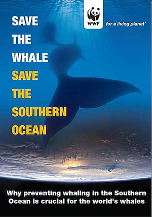 Save the Whale Save the Southern Ocean WWF