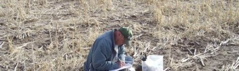 Geologist Jim Kilburn, now retired from the U.S. Geological Survey, collects soil from Kansas in 2008. Courtesy of USGS