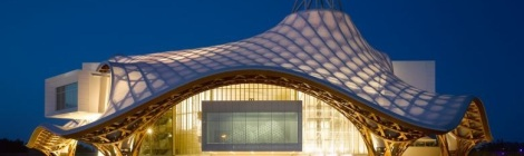 Spruce and larch are the woods used to make the beautiful swooping roof design of the Pompidou Centre Metz (France). Courtesy of the Pompidou Centre