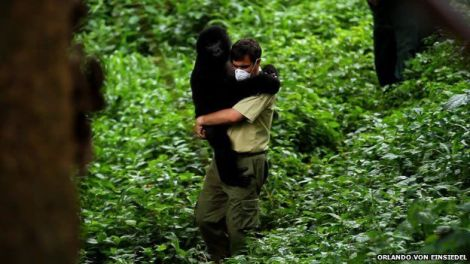 Emmanuel de Merode, director of Virunga National Park. Photo courtesy of Orlando von Einsiedel