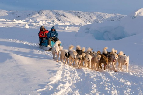 Dogsled trip to Sermeq Avanardleq, Greenland, March 12, 2008 (Courtesy of EIS)