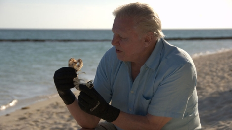 Attenborough at the Great Barrier Reef - his newest documentary TV production