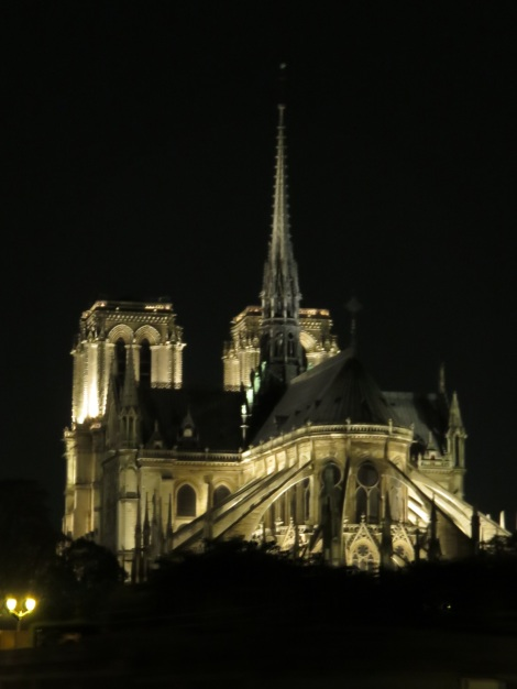 Notre Dame at night from a bateau on the Seine (Oct 2014) Bobbie Faul-Zeitler CC-3.0