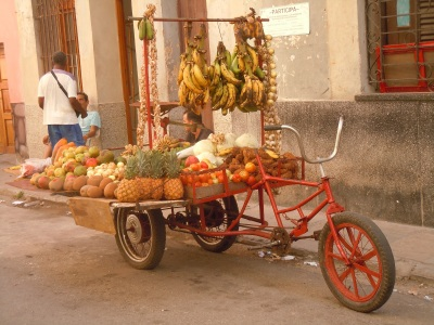Smallholders sell their produce on the street. Empty lots are used for raised bed production to feed urban populations.