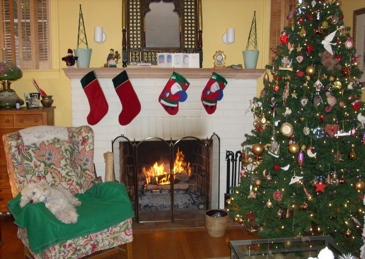 Warming by the fireplace, our best friend! (Bobbie Faul-Zeitler, CC 3.0)