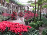 Longwood Gardens (Kennett Square PA) dressed for the holidays! (Bobbie Faul-Zeitler, CC 3.0)