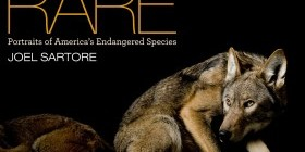 Rare book cover. Photo by Joel Sartore/National Geographic Photo Ark.
