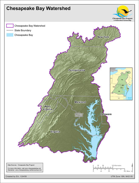 Chesapeake Bay Watershed is 64,000 square miles. The Bay iis the nation's largest estuary! Courtesy of CBF