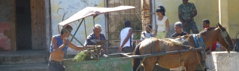 Horsedrawn huckster selling vegetables in Trinidad