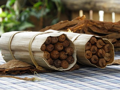 Rolled cigars at a tobacco farm. Photo courtesy of Els Slots