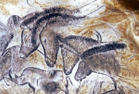 Horses drawn 36,000 years ago at the Chauvet Cave in Ardeche, Pont d'arc. © Patrick Aventurier Caverne du Pont d'Arc