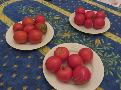 Recognize the Provencal tablecloth with olive leaves and the famed cigales (cicadas). The homegrown tomatoes are ours.