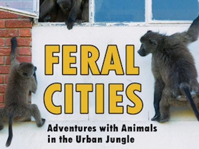 Feral Cities (cover)