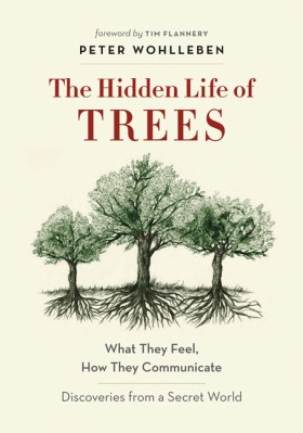 The Hidden Life of Trees (cover)