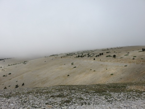 Peak of Mont Ventoux (in the French Vaucluse) is often foggy. The famed road to the peak is part of the annual Tour de France bicycle race. Its appearance is strictly moonscape. (Roberta Faul-Zeitler, CC 3.0)