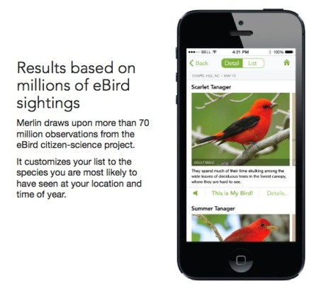 Merlin system for on-the-go birding