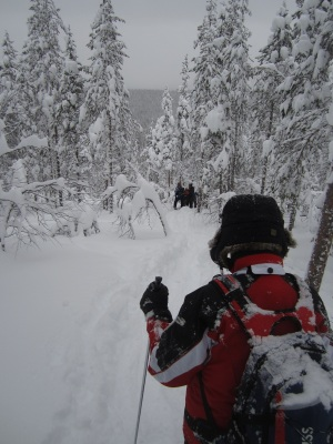 Snowshoe walking requires a guide! Photo by Aik Meeuse, Creative Commons 3.0