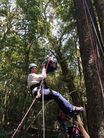 Dr Meg Lowman up in the canopy - look at that walkway!