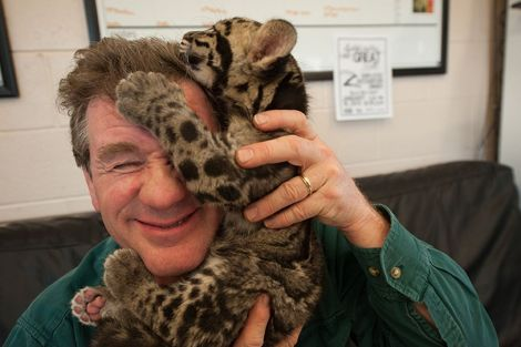 The man himself with a clouded leopard cub at the Columbus Zoo in Ohio! Photo by Grahm S. Jones Columbus Zoo and Aquarium