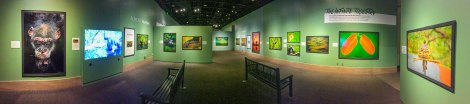 Into Africa exhibition at the Smithsonian Institution 2016. Courtesy of the Smithsonian Institution.