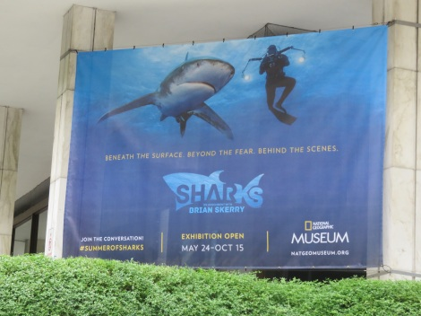 Banner outside National Geographic headquarters beckons.