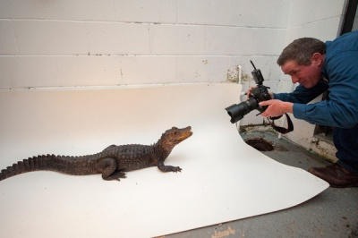 Joel Sartore on the set