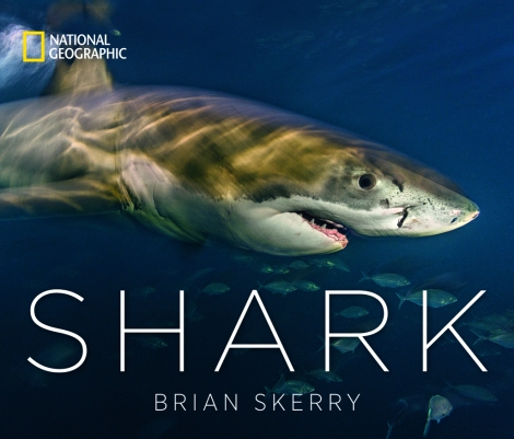 Shark, Brian Skerry's newest book with National Geographic