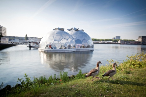 The Floating Pavilion, an eye-catching, solar-powered event space that looks like bubbles sitting on the water, is next to the floating forest. Courtesy of Jennifer Bain.