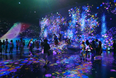 TeamLab borderless light show at the museum in Odaiba.