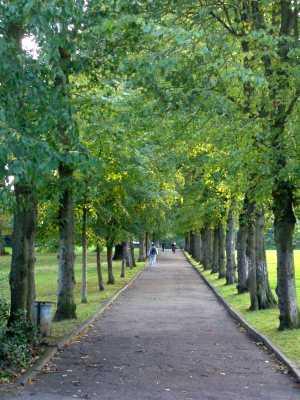 Alexandria Park London. Courtesy of Wikipedia